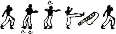 capoeirabasics